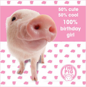 birthday cards of pigs  free wallpaper download, Birthday card