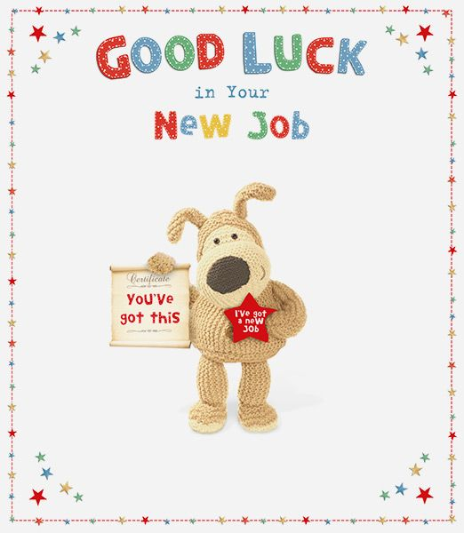 Boofle large new job greeting card m4hsunfo